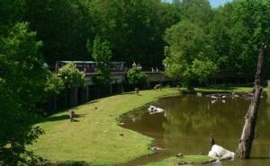 Тематические парки в Чехии
